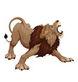 Angry lion is roaring vector image