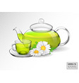 chamomile tea in a transparent teapot with a cup vector image vector image