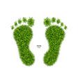 foot print made of green grass vector image vector image