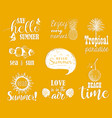 Hello summer set vector image