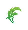 leaf eco nature sign logo vector image vector image