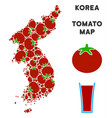north and south korea map composition of tomato vector image