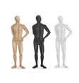 Set of Three Male Mannequins vector image