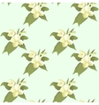 abstract jasmine flower seamless pattern vector image vector image
