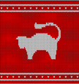 christmas knitted pattern with cat vector image