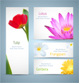 Flowers backgrounds vector image vector image