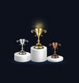 golden silver and bronze championship rewards vector image