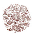 hand drawn cocoa beans chocolate design doodle vector image