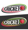 logos for cricket sport vector image vector image