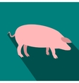 Pig flat icon vector image