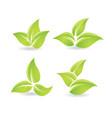 set of green leaves - bio emblem vector image vector image