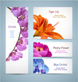 Flower Templates vector image