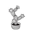 cactus for coloring books vector image vector image