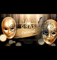 carnival mask with butterfly for mardi gras banner vector image vector image