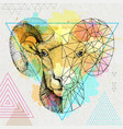 hipster animal realistic and polygonal ram vector image vector image