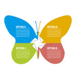 infographic concept paper stickers butterfly vector image vector image