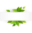 label with fresh green leaves vector image