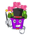 magician geranium flowers in the cartoon shape vector image