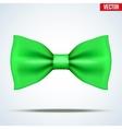 Realistic green bow tie vector image vector image