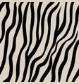 zebra seamless pattern black hand drawn stripes vector image