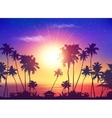 ocean sunset sky with dark palm silhouettes vector image