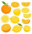bright set of juicy orange and lemon on vector image