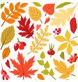 cute flat seamless pattern with autumn leaves vector image
