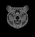 engraving stylized bear on black background vector image vector image