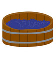 grape in wooden barrel produce wine in keg vector image vector image