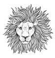 patterned ornate lion head african indian totem vector image