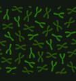 seamless chromosomes pattern on dark background vector image