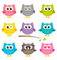 set of funny owls isolated on white vector image vector image