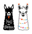 set with llamas and lettering quote you vector image vector image
