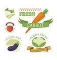 vegetables label template icon vector image vector image