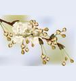 vintage cherry blossom round card frame spring vector image