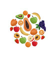 fruit fresh nutrition menu food design vector image