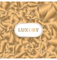 luxury pattern vector image vector image