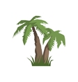 Two Palm Trees Jungle Landscape Element vector image