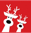 two white christmas reindeer vector image vector image