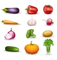 Vegetable Health Food Colorful Icons vector image vector image