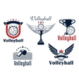 Volleyball game emblems with sport items vector image vector image