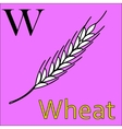 W letter alphabet Coloring book wheat vector image vector image