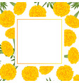 yellow marigold on white banner card vector image vector image