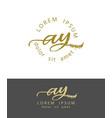 a y initials monogram logo design dry brush vector image vector image