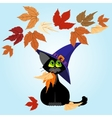 Black cat in a lilac hat Autumn leaves vector image vector image