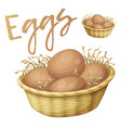 chicken eggs in basket icon cartoon vector image vector image