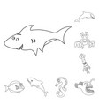 design of sea and animal symbol collection vector image