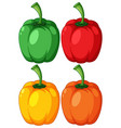 different bell pepper on white background vector image