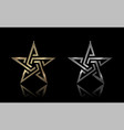 gold and silver star vector image vector image