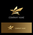 star abstract gold logo vector image vector image